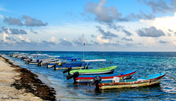 Boats on Puerto Morelos' Shoreline